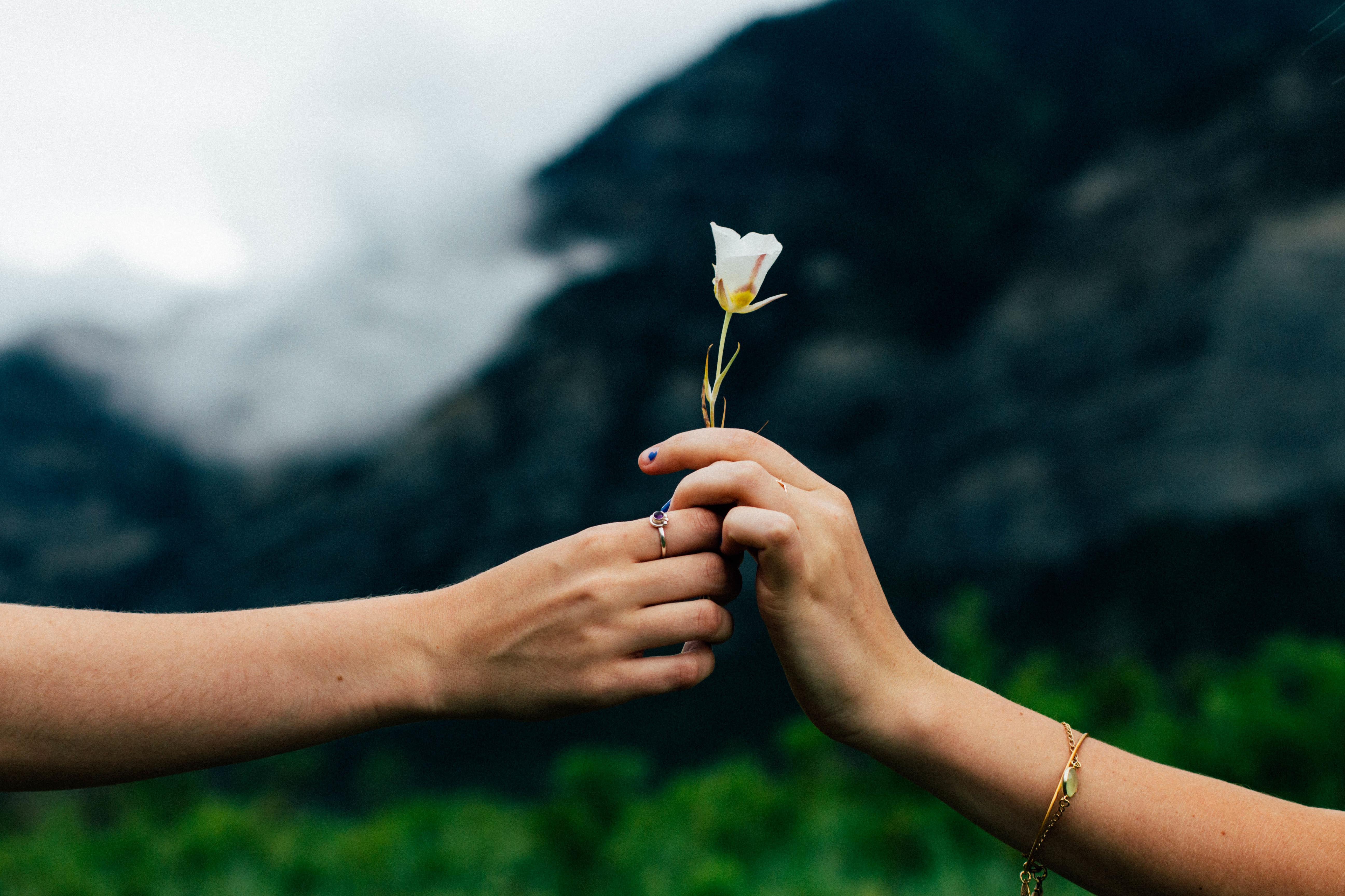 flower handoff